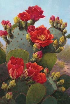 Pricked by a cactus thorn, now you are wondering if cactus poisonous is a thing or not. Here are some tips, tricks that will guide to cactus thorns. Cactus Painting, Cactus Art, Cactus Drawing, Art Floral, Cactus E Suculentas, Cactus Plante, Desert Art, Cacti And Succulents, Cactus With Flowers