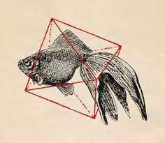 "Fish in Geometrics III, Speakerine, 9"" x 8"", $19"