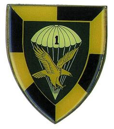 1 Para Bn Flash Military Training, Military Service, Military Life, Airborne Army, South Afrika, Parachute Regiment, Defence Force, Paratrooper, African Countries