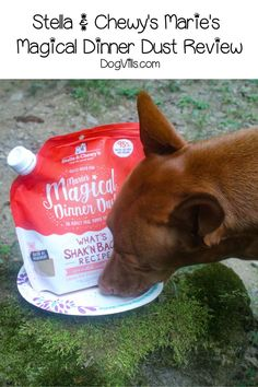 Thinking about trying out Stella & Chewy's Marie's Magical Dinner Dust but not sure if it's worth buying? Check out our full review! Best Dog Food, Best Dogs, Cute Dog Collars, Medication For Dogs, Sick Dog, Dog Diet, Companion Dog, Dog Safety, Homemade Dog Treats