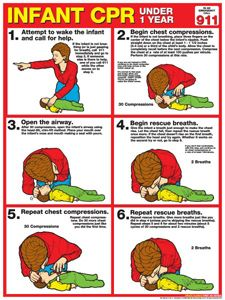 INFANT CPR First Aid Wall Chart Poster (2011 AHA Guidelines) - Available at www.sportsposterwarehouse.com