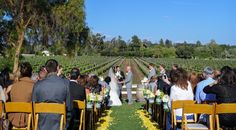 perfect setting for saying your Santa Barbara County, Event Planning Tips, Pure Joy, Corporate Events, Catering, Dolores Park, Pure Products, Travel, Viajes