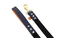 FriendshipCollar – Leash –  Classic Pup – Monaco Blue – 01