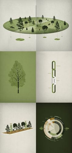 Elements in this illustration look united mainly due to the stable color choice and the overall nature-related theme.