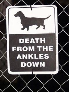 wiener dog sign