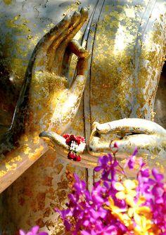 martamara: Ho limpressione che noi abitiamo en uno spazio immaginario, prospettiva senza, Dove il tempo no esiste, paloma nulla comincia perché nulla finisce Vasilis Alexakis - La lengua Materna