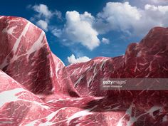 Stock Photo : EL Capitan that made of meat. (Pork)