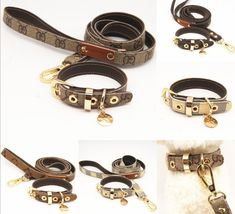 Fancy trendy yorkie collar leash - necklace: Available now from our online store! Dog Collars & Leashes, Buy Pets, Medium Sized Dogs, Cat Accessories, Pet Carriers, Leather Collar, Collar And Leash, Types Of Collars, Flower Fashion