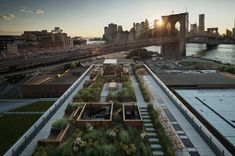 brooklyn building with communal roof garden - located at the center of brooklyn's DUMBO neighborhood, 60 water is a 17-storey apartment building designed by leeser architecture and developed by two trees management. situated next to the famous brooklyn bridge, the scheme offers impressive views across the east river towards lower m...