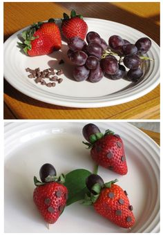Ladybug strawberries! Great kid's snack. Click for more fun bug-shaped snacks!