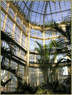 Interior: Druid Hill Park Conservatory in Baltimore, MD, was completed in 1888. It is one of the oldest surviving glass conservatories in the United States.