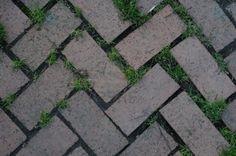 Old Bricks, Brick Patterns, Flower Beds, Zig Zag, Stepping Stones, Grass, Outdoor Decor, Design, Stair Risers