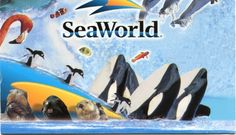 Free SeaWorld Admissions ticket for veteran and up to three of their guest. Now until Nov. 11th http://wavesofhonor.com/ #BattleBuddyInfo