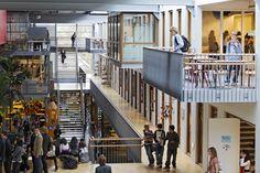 Studio Leon Thier – The International School The Hague