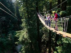You don't always have to travel far to have an amazing retreat experience! Our coastal California retreats await groups with lots of adventures, like this canopy tour in Mt Hermon