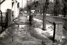 Ulica Dominikańska w zimie 1978
