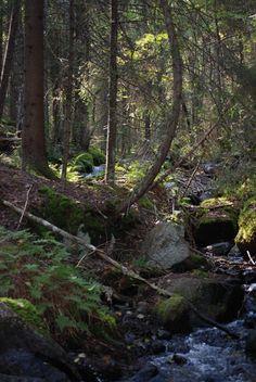 Vihijärvi, Finland