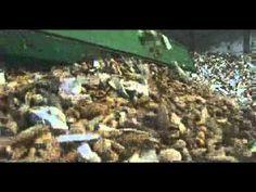 Film documentaire : We feed the world, le marché de la faim - YouTube