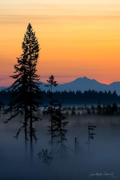 Mountains and Mist – Amazing Pictures - Amazing Travel Pictures with Maps for All Around the World