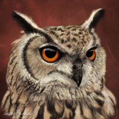 Want a drawing of your pet? I take pet portrait commissions! Please message me for quotes. Eagle Pictures, Owl Pictures, Baby Animals, Cute Animals, Eurasian Eagle Owl, Owl Photos, Curious Creatures, Horned Owl, Beautiful Owl