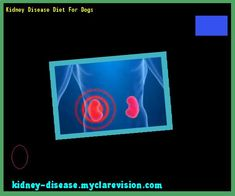 Kidney Disease Diet For Dogs 102059 - Start Healing Your Kidneys Today!