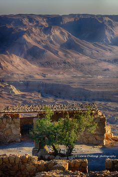 *ISRAEL~VIEW FROM MASADA: early morning
