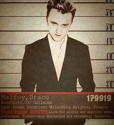 Wanted: Draco Malfoy