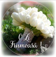 Good Morning, Flower Arrangements, Vegetables, 8 Martie, Decor, Birthday, Italia, Bonheur, Quotes