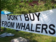 Don't Buy from Icelandic whalers - Banner