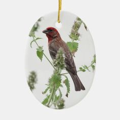 Redhead in Mint Ceramic Ornament   redhead wedding, redhead funny, tan redhead #redheadwitch #redheadedgirl #redheadswholift, 4th of july party Redhead Funny, Redhead Art, Irish Redhead, Redhead Quotes, Bird Christmas Ornaments, Christmas Diy, Christmas Cards, Christmas Decorations