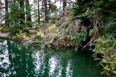 Ohme Garden Pond.