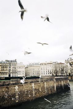 Ile Saint-Louis in Paris Oh The Places You'll Go, Places To Travel, Travel Destinations, Places To Visit, Midnight In Paris, Beautiful World, Beautiful Places, Oh Paris, Ile Saint Louis