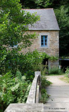 Pont Aven - le bois d'amour #bretagne #Finistère #Brittany