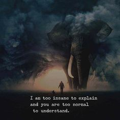 I am too insane to explain and you are too normal to understand