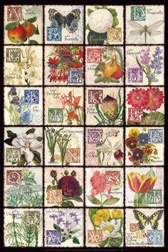 Gardener's Alphabet Láminas en AllPosters.es