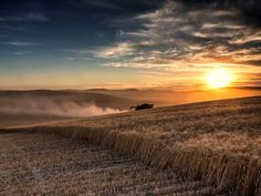 """""""Whitman County, the heart of the Palouse and the most productive wheat-producing county in the USA."""""""