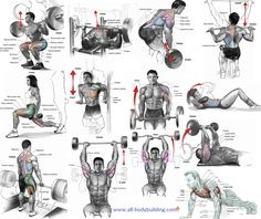 The Best Exercises to Include In Your Muscle Building Routine Gym Workout Chart, Gym Workouts, Muscle Body, Leg Exercises, Legs Day, Body Parts, Improve Yourself, Weight Training, Healthy Living