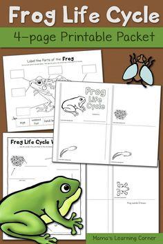 insects worksheets free homeschool helper online 39 s free label the insect worksheet worksheet. Black Bedroom Furniture Sets. Home Design Ideas
