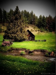 The life before now. Cabin, House Styles, Life, Decor, Decoration, Cabins, Cottage, Decorating, Wooden Houses