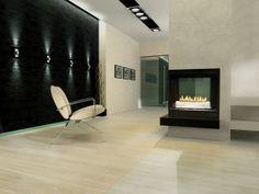 Wood Burning Fireplace Inserts Flush Design