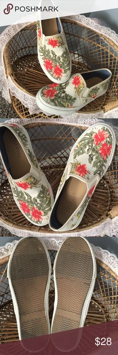 Talbots slip on shoes Too cute. Only worn 3 times. Very comfy. Haven't seen ANY stains at all! No tears or holes LN Talbots Shoes