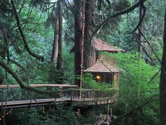 Treehouse Point in Fall City, Washington
