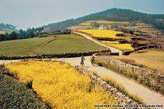 50 stunningly beautiful places in Korea.