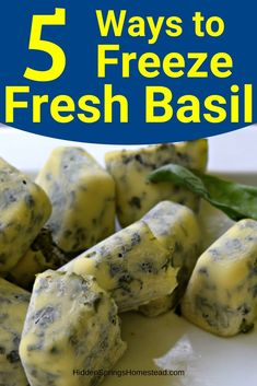 5 WAYS TO FREEZE FRESH BASIL. Do you love the flavor of fresh basil? Now you can enjoy the fresh flavor all winter by keeping frozen basil in your freezer. Learn how to freeze fresh basil from the garden in ice cubes, as a puree or chopped. Storing Fresh Basil, Freezing Fresh Herbs, Preserve Fresh Herbs, Freezing Vegetables, How To Preserve Basil, Freeze Herbs, Fresh Basil Recipes, Herb Recipes, Canning Recipes