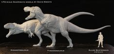 David Krentz Art  A comparison of T.rex and the slightly larger Giganotosaurus. I painted a little Great White Hunter for comparison. Too bad my Spinosaur isn't done, it would fit nicely in here. These models are about 7 1/2 inches long. You can order them from Shapeways.com if you so desire.