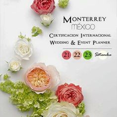 Mexico Wedding Planner