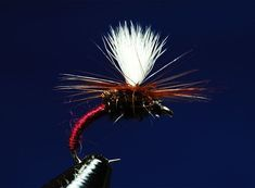 Pricelist for Printing : Czech Nymphs , Online Store #FlyFishing