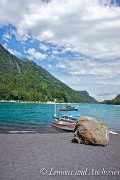 Parque Nacional Vicente Perez Rosales, Chile | photo via @Jean | Lemons and Anchovies