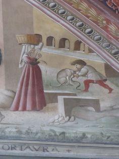 Medieval Fashion, Italian Renaissance, Italian Fashion, 15th Century, Portraits, Pink Gowns, Costume, Photography, Inspiration