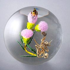 Paul Stankard Bee On Pink Thistle Paperweight
